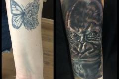 Gringo-Gorilla-Cover-Up-Pic-5.19.19