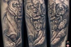Gringo-Lion-Family-Pic-8.30.19