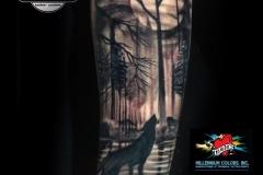 Gringo-Wolf-Nature-Pic-4.25.19