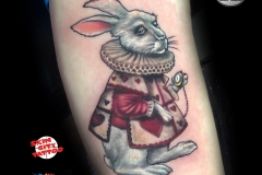 white-rabbit-gringo-pic