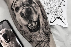 Raya-Dog-3.7.20