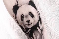Raya-Panda-Pic-6.17.20