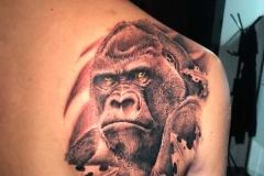 Inkhore-Gorilla-9.1.21