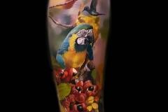 Jardel-Birds-6.7.21