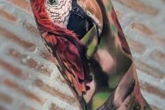 Jardel-Parrot-7.20.20