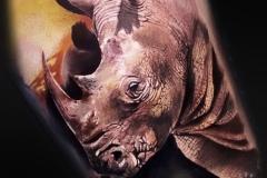 Jardel-Rhino-6.7.21