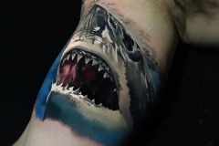 Jardel-Shark-3.10.20