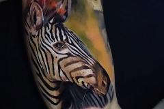 Jardel-Zebra-Pic-5.22.20