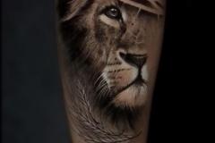 Juninho-Lion-6.3.21