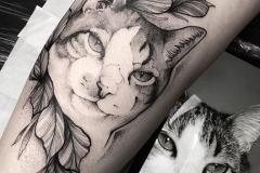 Raya-Cat-7.31.20