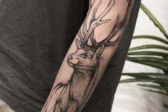 Raya-Deer-6.28.21