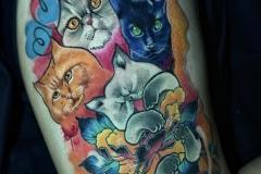 Ricco-Cats-5.22.21